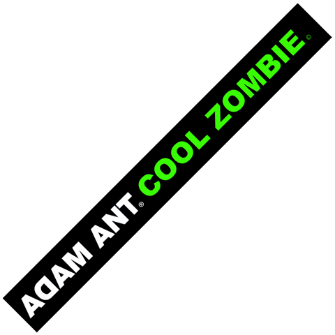 Adam Ant cool zombie usb wristband