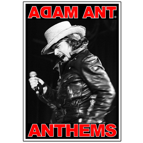 Adam Ant Anthems Fridge Magnet